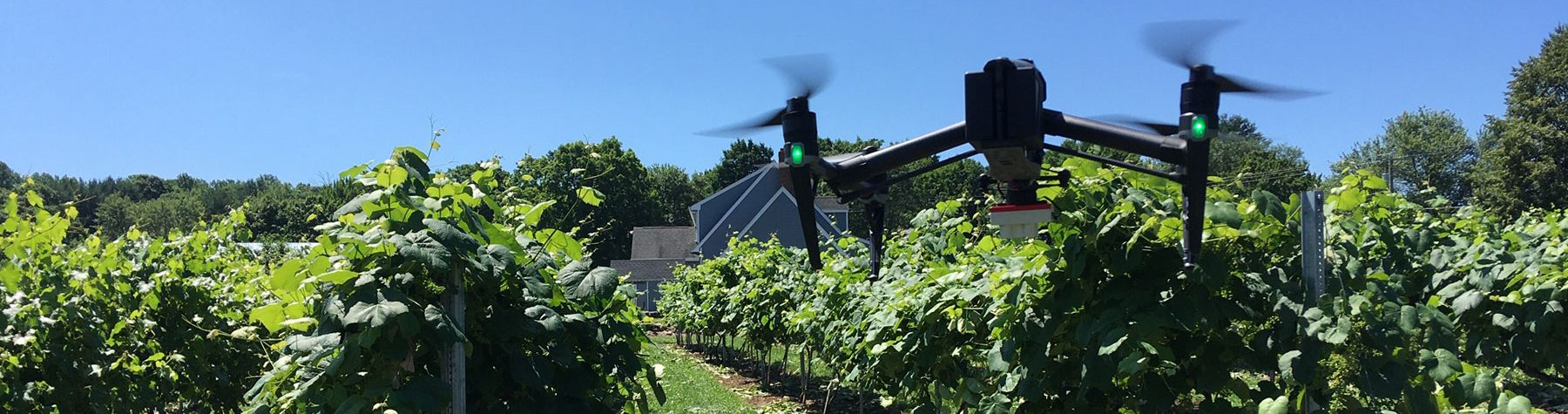 Remote Sensing Online Graduate Certificate: Image of Drone Flying within Agricultural Fields